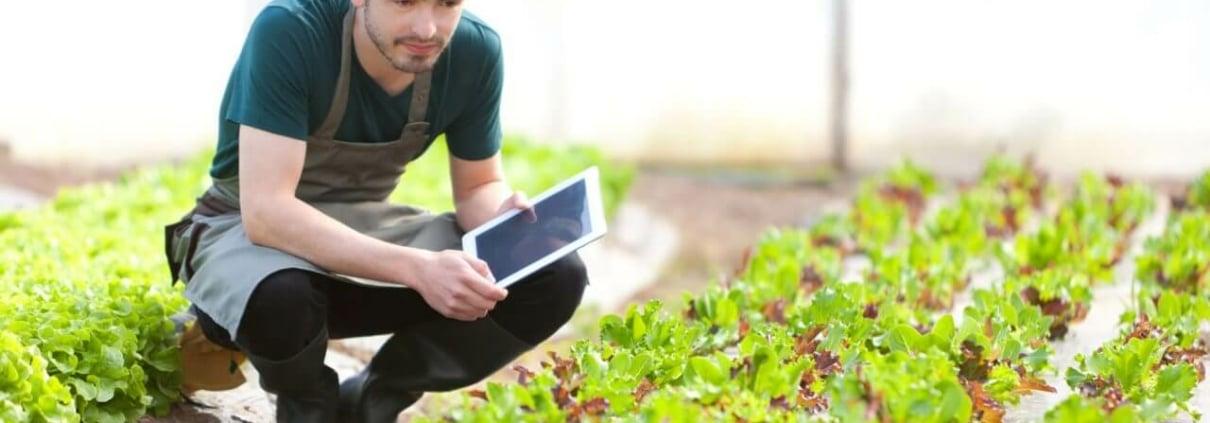 Quels sont les fondamentaux pour son processus de Lead Nurturing ?